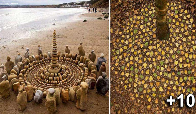 Un artist creează mandale uimitoare în natură, pe care le lasă pentru a fi descoperite de trecători