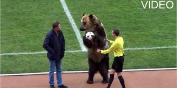 urs la meci de fotbal