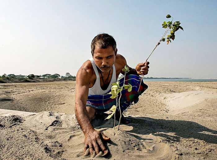 barbatul care a transformat desertul in padure