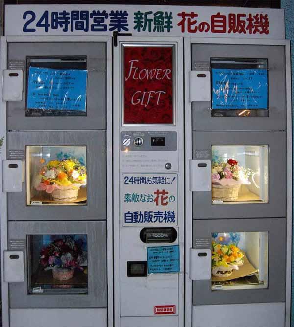 automate vending flori