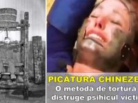 picatura chinezeasca