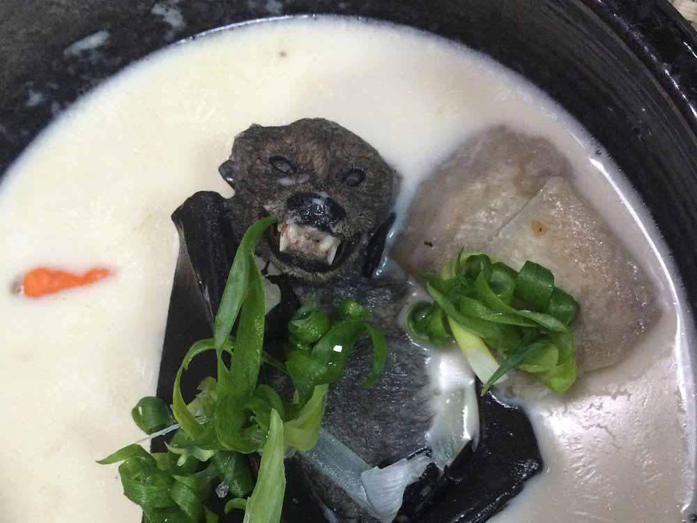 supa de liliac