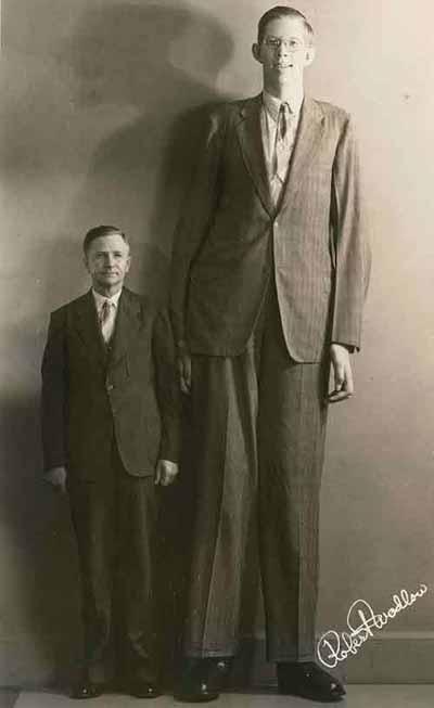 cel mai inalt om din lume