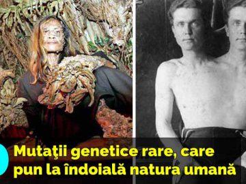 mutatii genetice