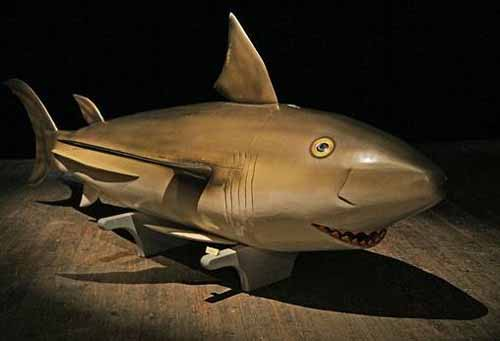 sicriul rechin