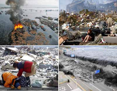 dezastre ecologice fukushima