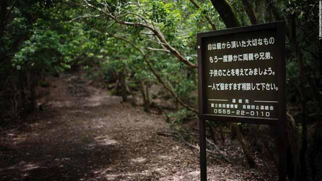 semn padurea aokigahara