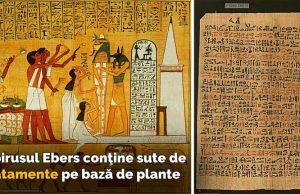 papirusul ebers
