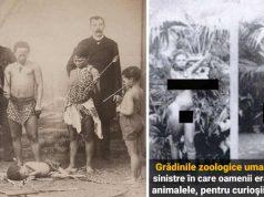 grădinile zoologice umane