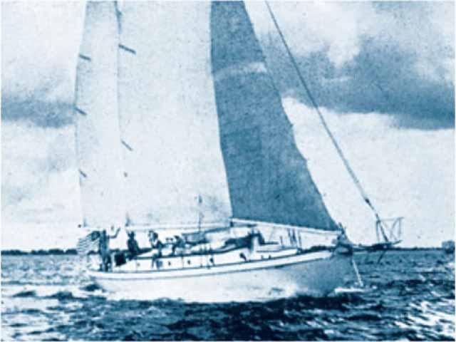 vasul bluebelle